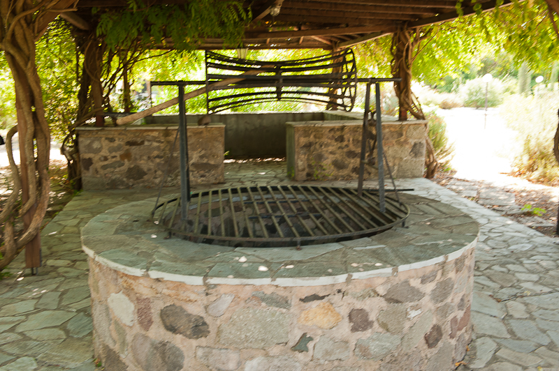 A well in the olive grove